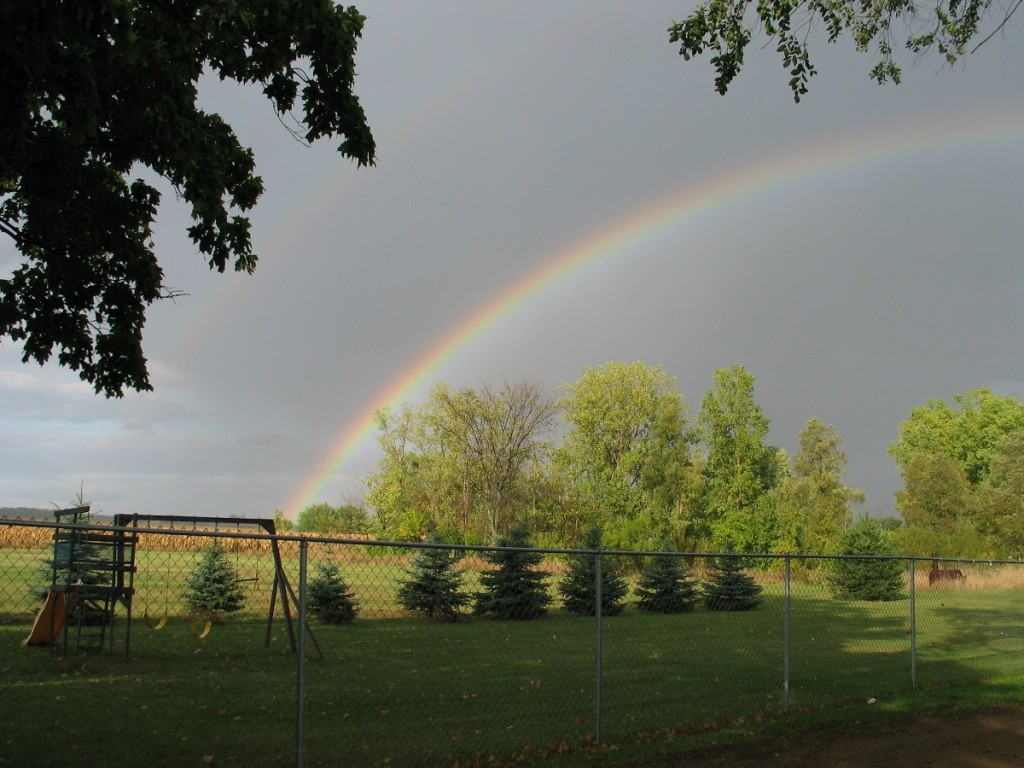 Rainbow from our yard in Michigan