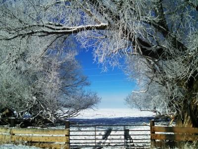 Winter on a mountain farm